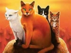 XxwarriorcatsxX
