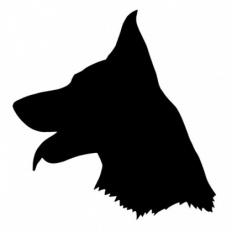 blackgermanshepherd