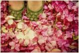 rosies garden