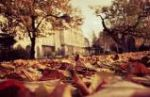 Autumnal Cloister
