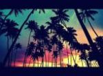 Coconut Sunset
