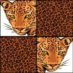 Animal Prints 170