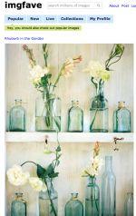 Primflower