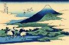 Cranes at Umegawa