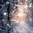 Snowfall Sparkles