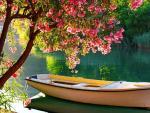 boat kissing