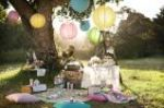 Picnic Party2