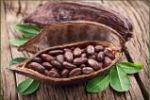 Mint Cocoa