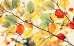 Liście jesieni