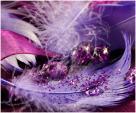 Satin Plum Fairy