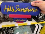 Sunshine Agency #3
