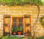 Garden by The Window
