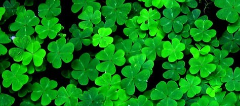 The Color Green and Saint Patrick's Day
