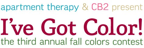 Apartment Therapy: Fall Colors Contest