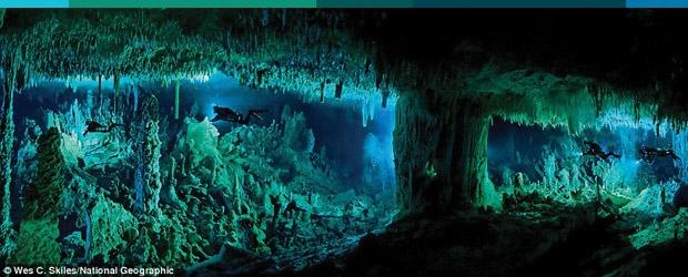 Blue Holes of the Bahamas